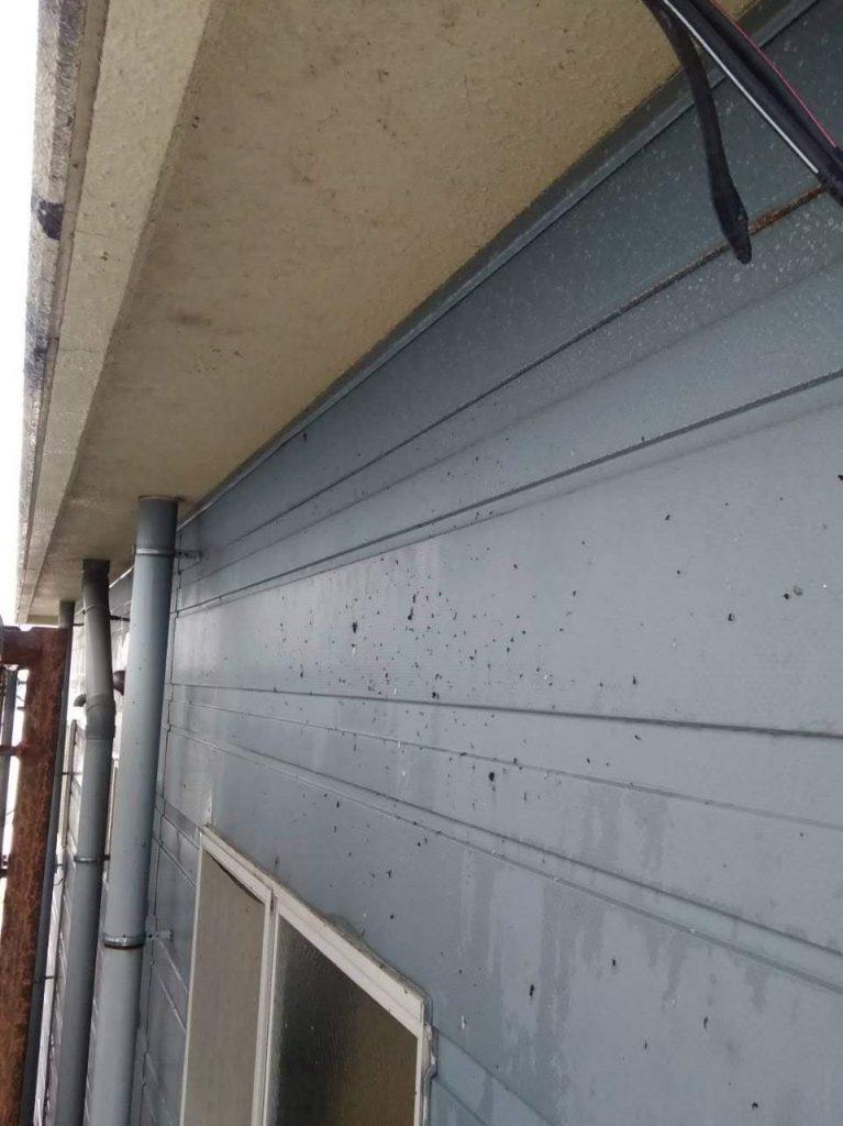 ハイハイネット,リフォーム,外壁,塗装,便利屋